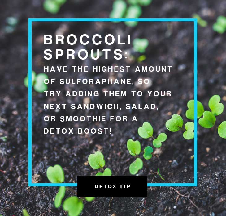 Detox diet tip: Broccoli sprouts are a great detox food because of the high amount of sulforaphane.